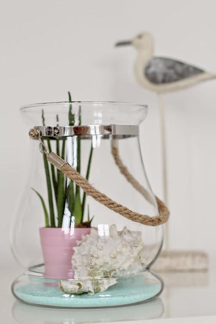 Stilleben mit Bogenhanf im Glas und mediteraner Deko wie Muscheln, Sand und Möwe