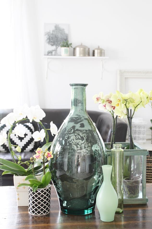 diverse Orchideen arrangiert auf einer braunen Anrichte vor Sofa mit schwarzweißen Kissen