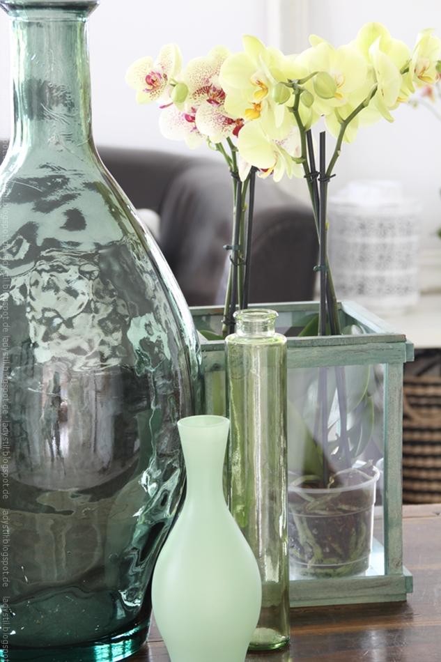 gelbe Orchidee in grünem Topf mit grünen Vasen