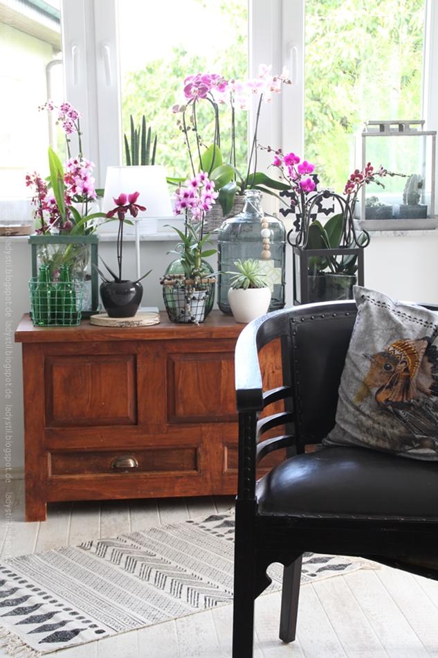 pinke Orchideen auf einer Truhe Teppich und antiker Sessel im Vordergrund