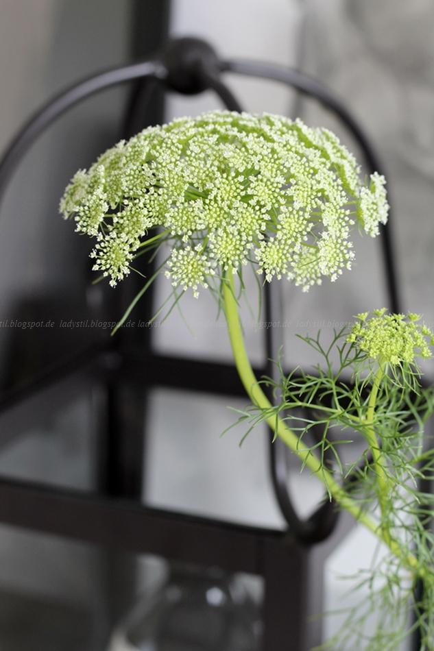 Urban Jungle Bloggers Flowers Plants Bild zeigt eine Blume in Grün