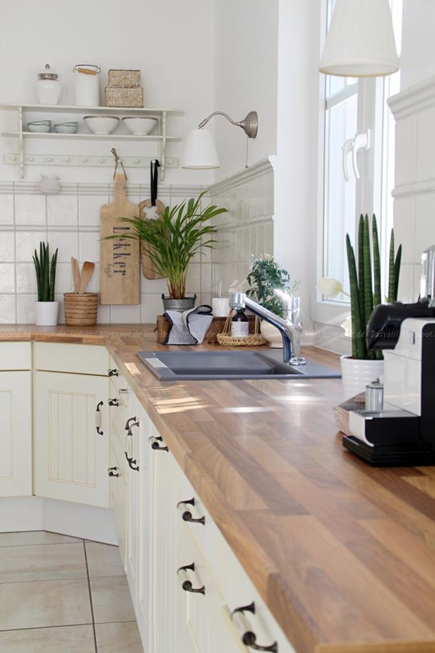 Blick auf ein Vorher Küchenbild in schwarz weiß Holz und mit Grünpflanzen