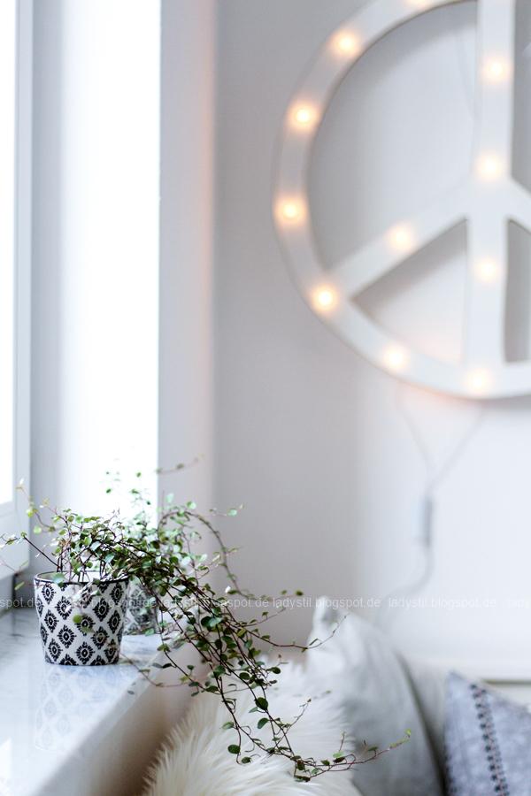 zwei schwarz weiße IB Laursen Tassen als Übertöpfe für Mühlenbeckia, im Hintergrund das beleuchtete Peacezeichen