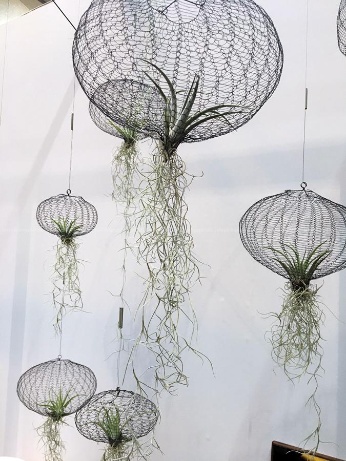 Thema Pflanzen Carolijn Slottje Aufhängungen für Luftpflanzen Internationalen Möbelmesse imm2017 in Köln mit Herstellern wie String, Vita, Bloomingville,Cane-line und Carolijn Slottje
